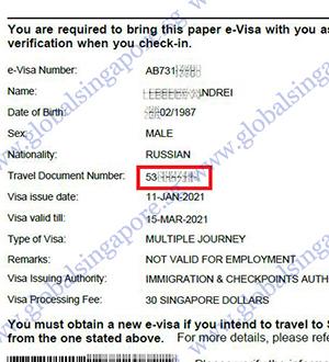 singapore visa example for checking